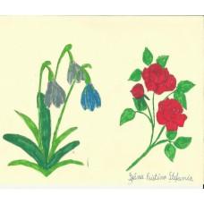 Ghiocei şi trandafiri